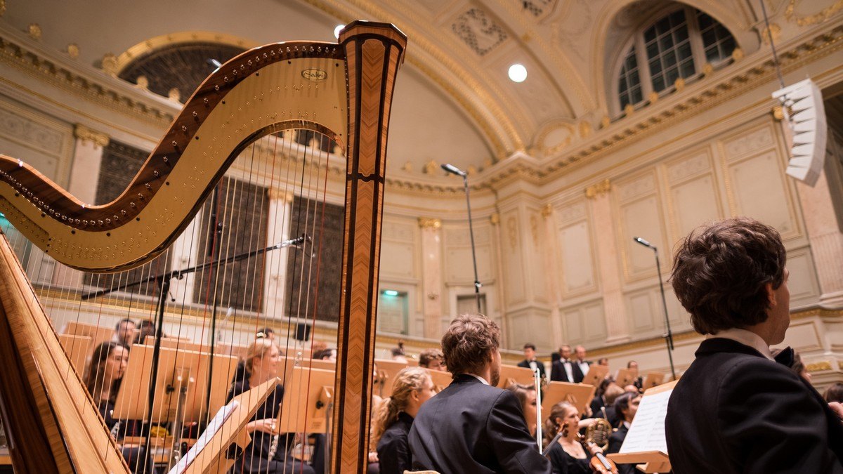Čeští skladatelé jejich hudbu právě hrají v rámci koncertu.