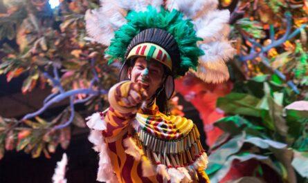 Mladík v kostýmu typický pro karneval v Riu.